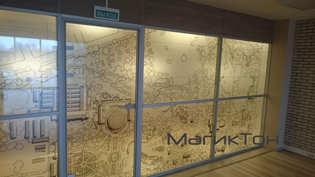 Стекляная стенка офиса с нанесенным декоративным рисунком